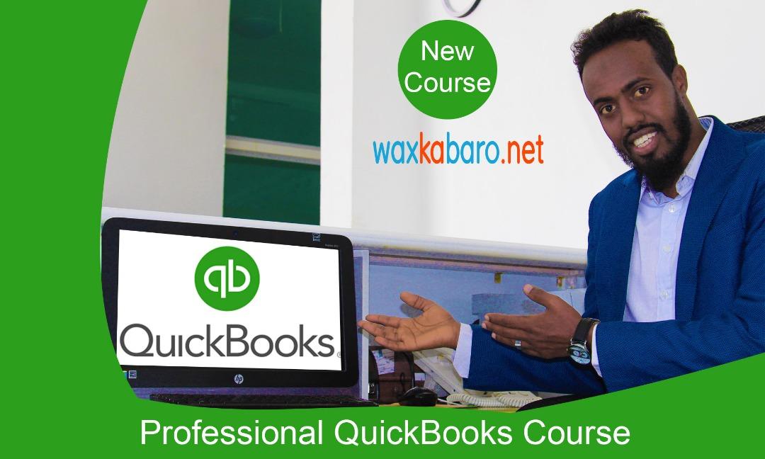 professional QuickBooks pro